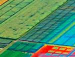cubert-appl-agriculture_zoom